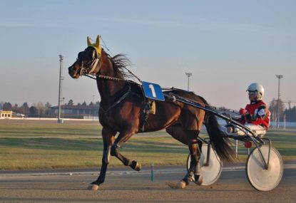 Harness racing selections: Friday, September 17