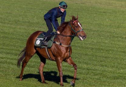 The Everest runner-by-runner preview and tips