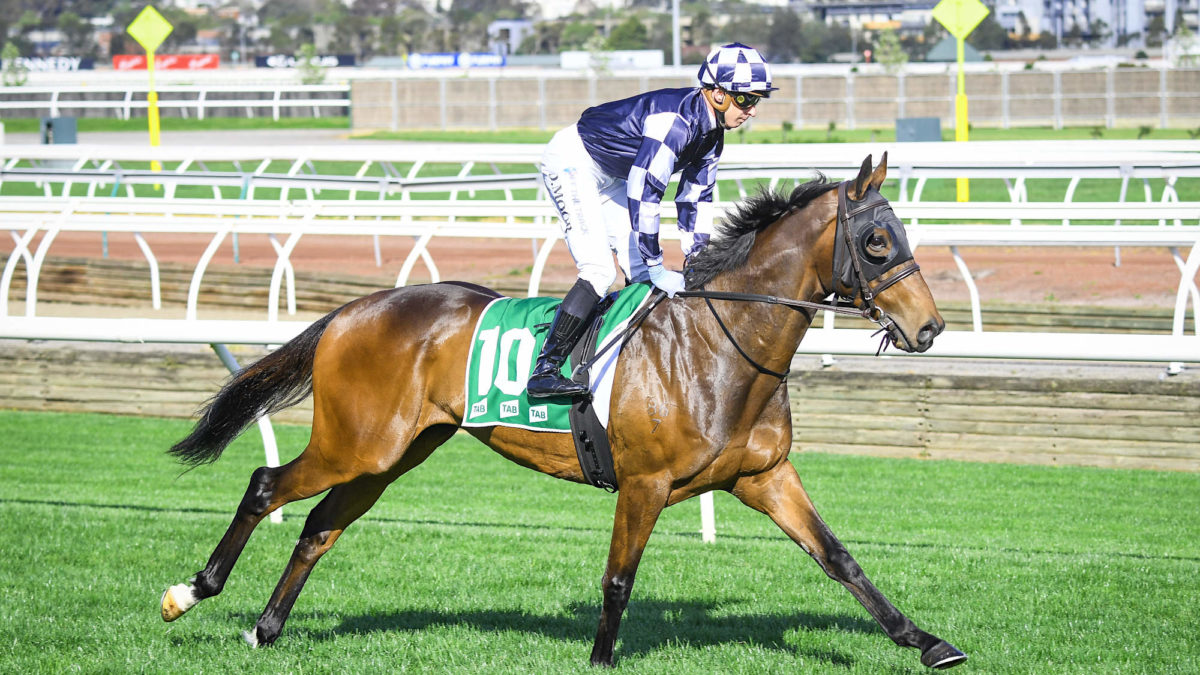 Caulfield Cup tips and preview