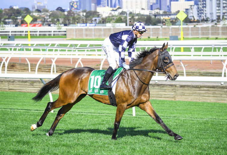 Young Werther on their way to the barriers at Flemington
